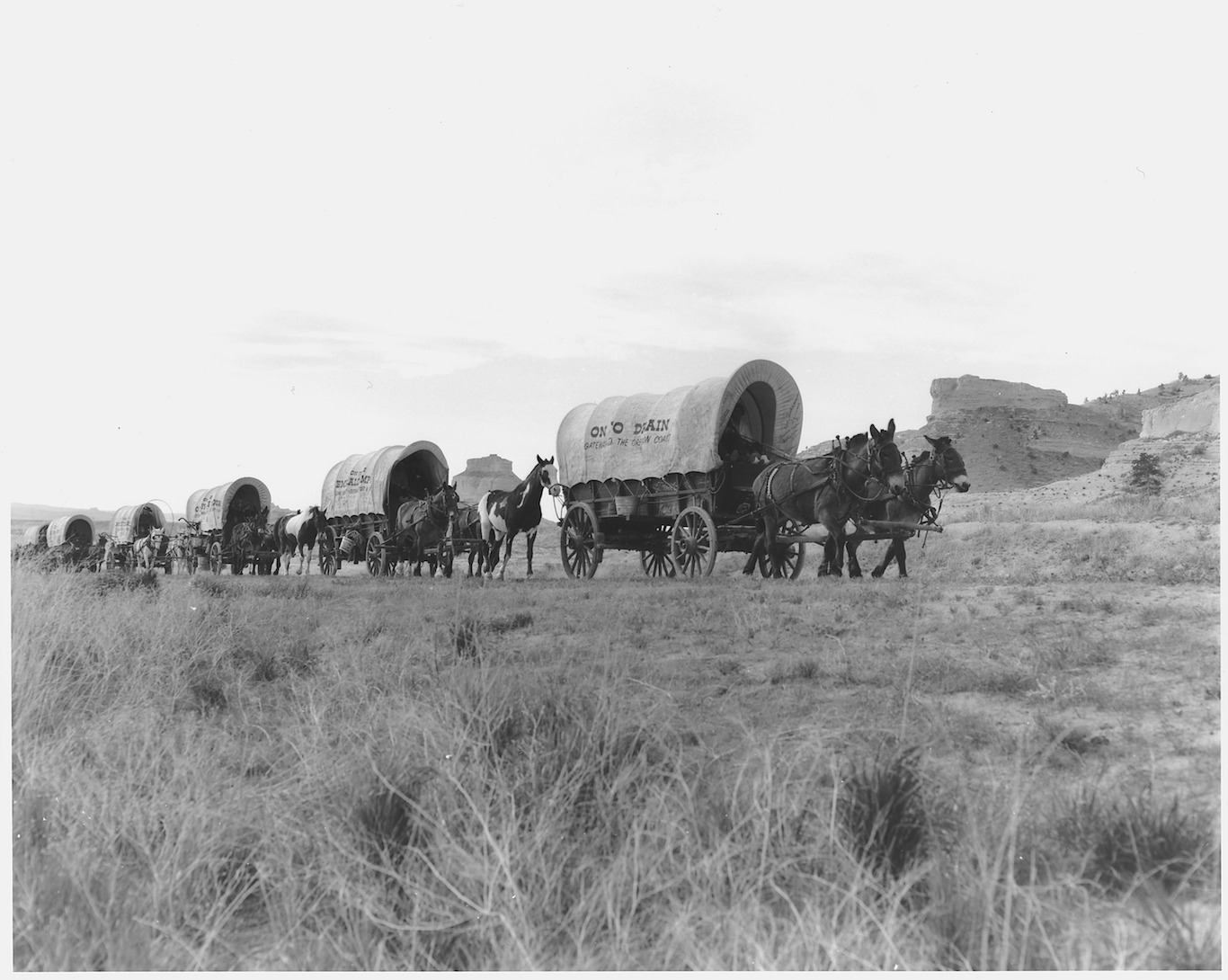How You Wound Up Playing <em>The Oregon Trail</em> in Computer ...