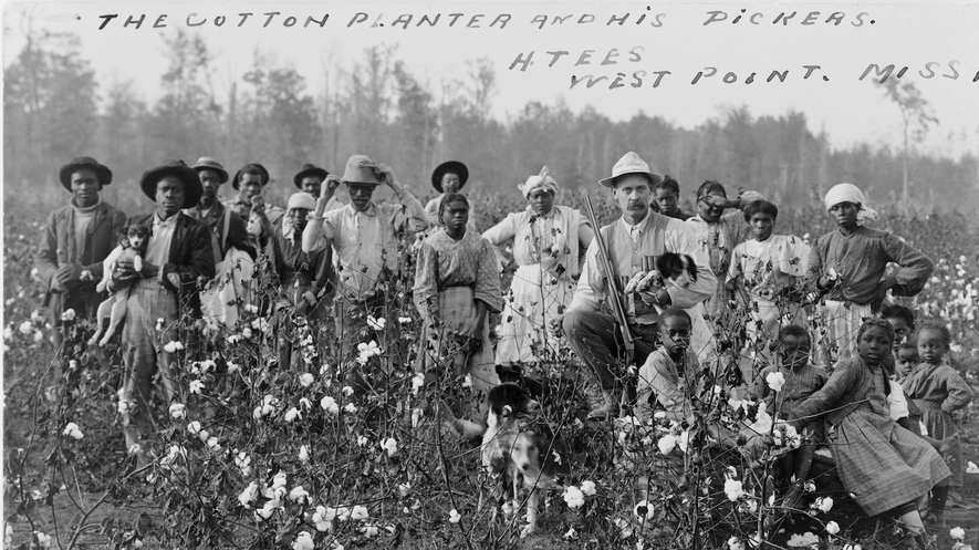 "Newsela | Southern Plantation Owners Used ""King Cotton"" to ... Cotton Plantations 1800s"